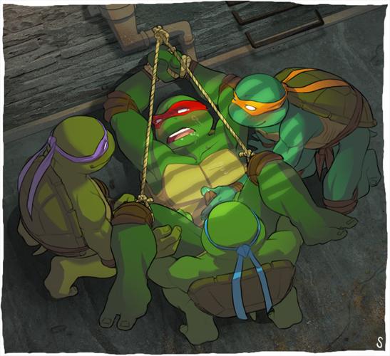 ninja turtles teenage xxx mutant Amy rose sonic x gif