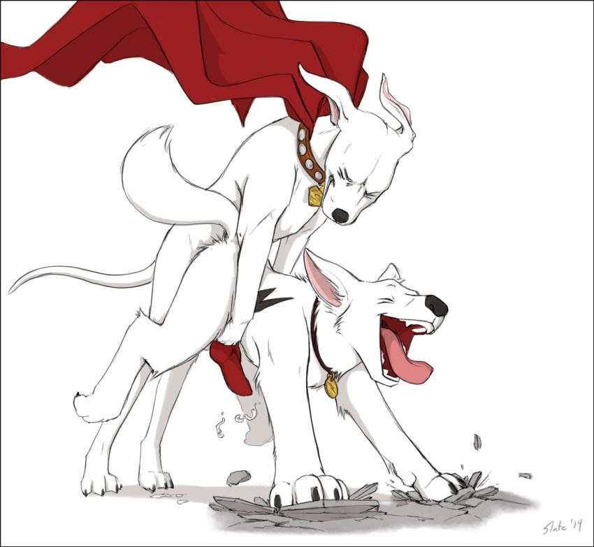 krypto tusky the superdog husky Hantsu_x_trash