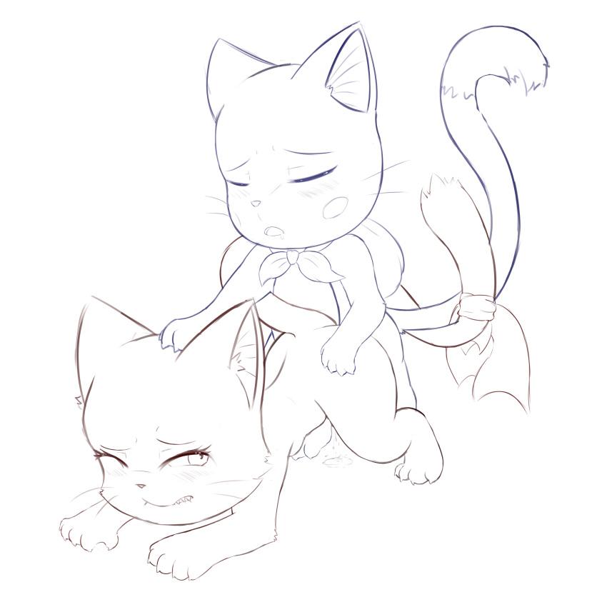 fairy the cat tail happy Mondaiji tachi ga isekai kara kuru sou desu yo black rabbit