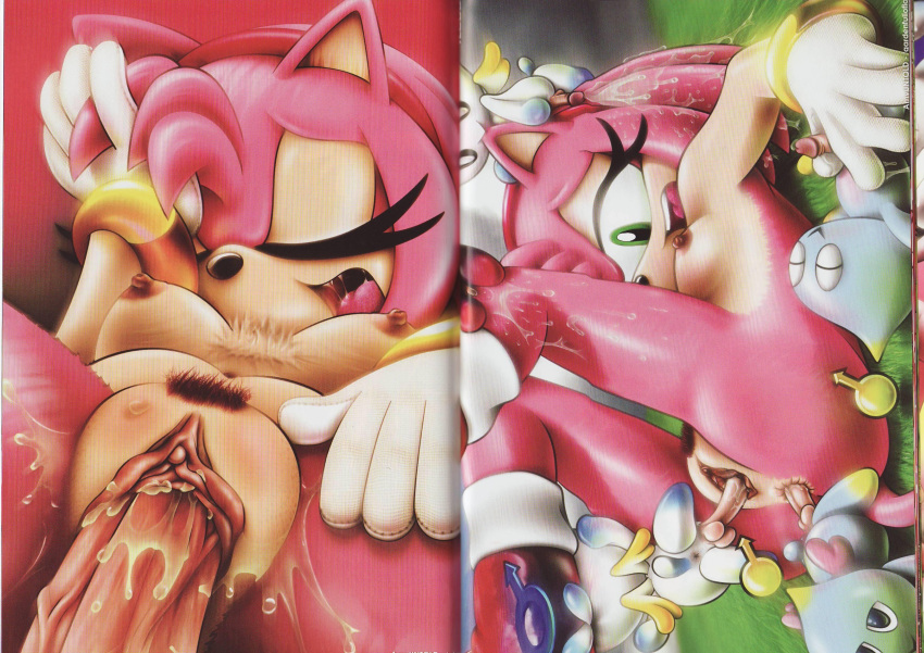 amy old rose how is Togainu_no_chi